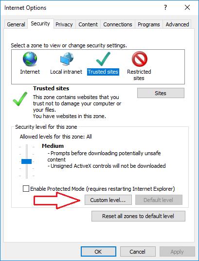 internet options trusted sites custom level