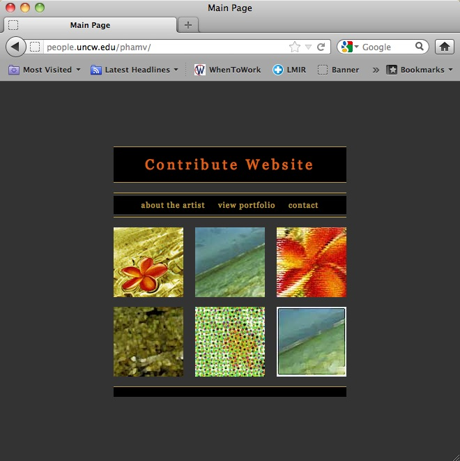 Internet View of Example main Page