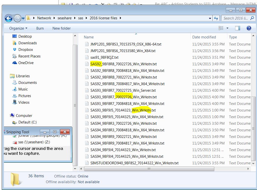Screenshot of Internet explorer browsing to path